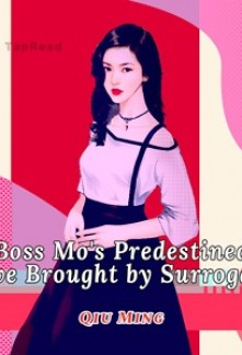 Boss Mo's Predestined Love Brought by Surrogacy